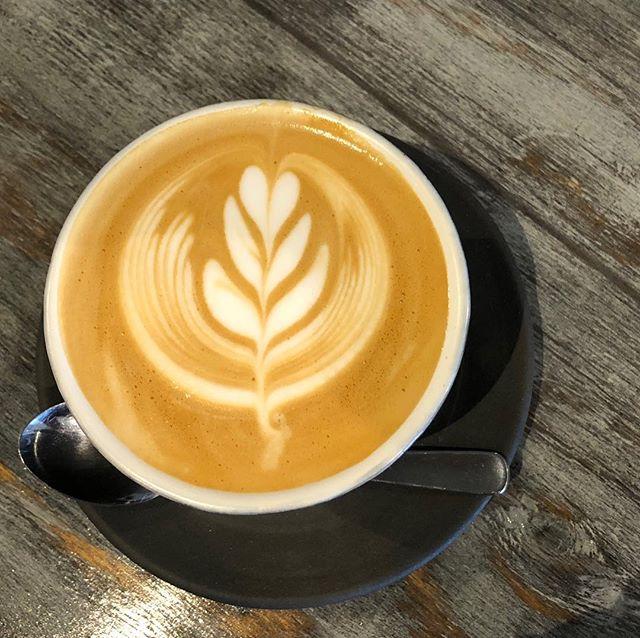 おはようございます。Sunny's coffeeです。・口当たりの良い滑らかなミルクのカプチーノはいかがですか?espressoには、サンフランシスコにあるFour Barrel coffeeのfriendo blendo espressoを使用しています。・是非、お召し上がりください!・#サニーズコーヒー #sunnyscoffee #カプチーノ #カプチーノアート #fourbarrel #4b #espresso