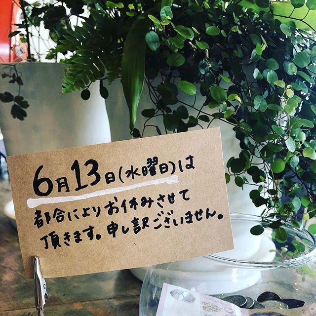 ・・お知らせ・6月13日水曜日は都合により、お休みさせていただきます。・・#sunnyscoffee #coffee #cafe #定休日のお知らせ