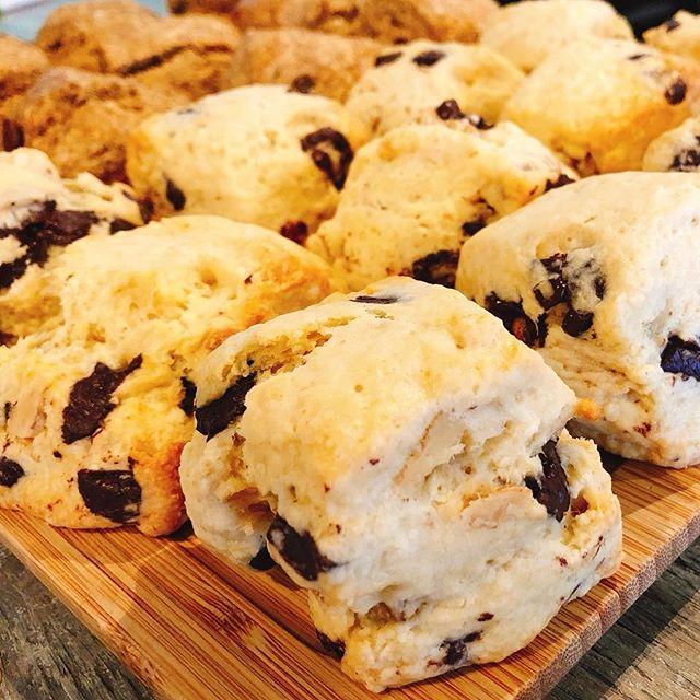 こんにちは!本日も9:00〜18:00まで営業しております!!是非お越しください!#sunnyscoffee #coffee #scones #cafe #lunch
