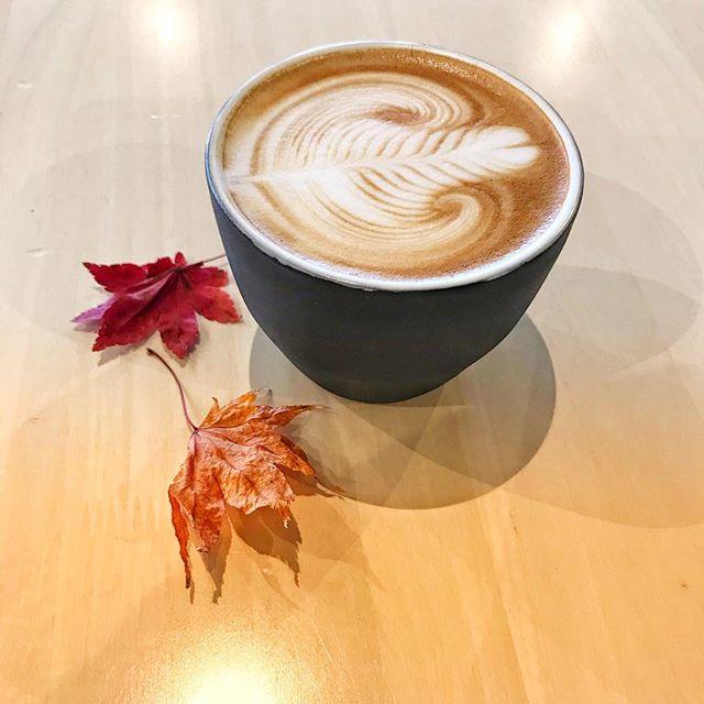 おはようございます!本日も18:00まで営業しております!#coffee #latte #latteart #sunnyscoffee #栃木 #lunch #espresso